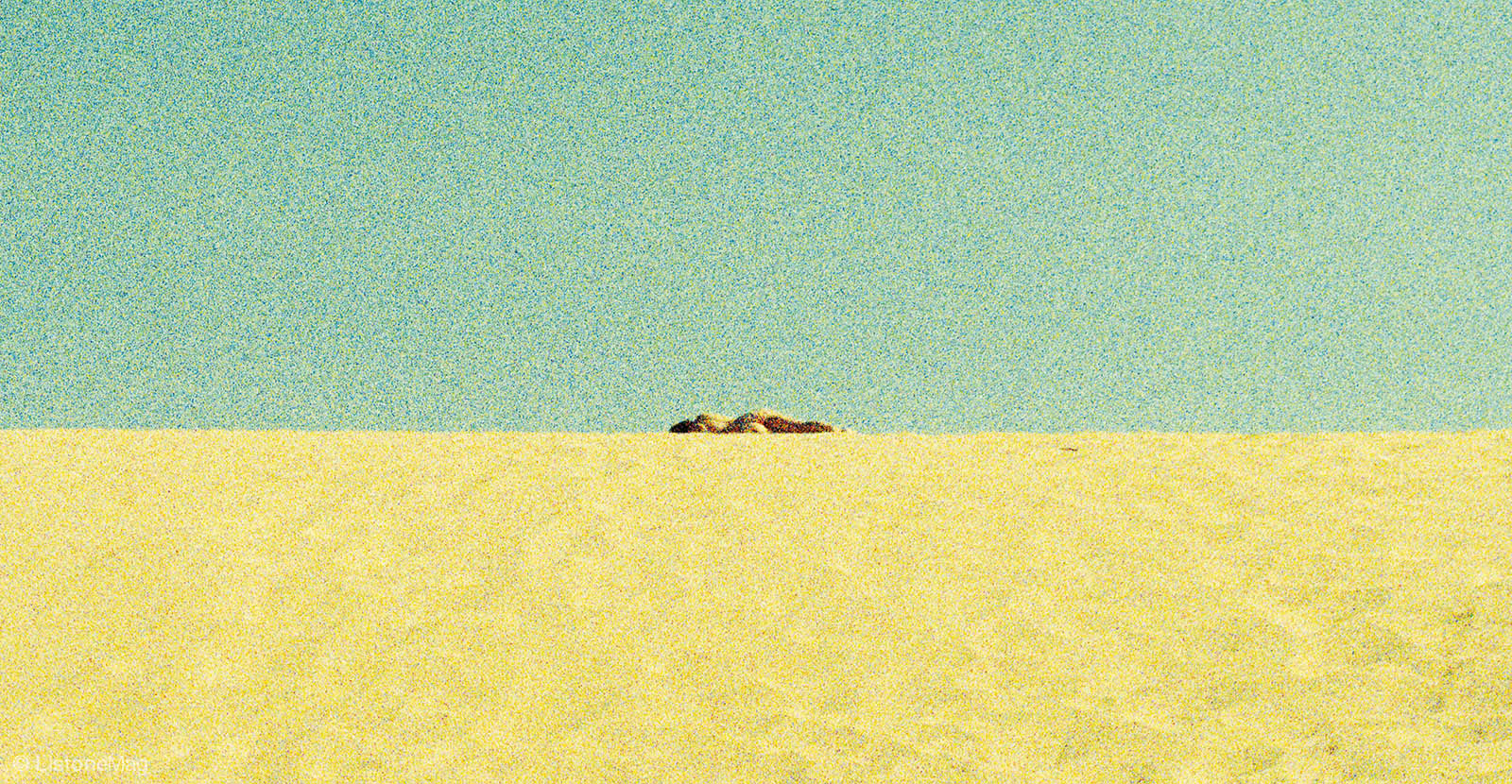 30072015-crop-cover
