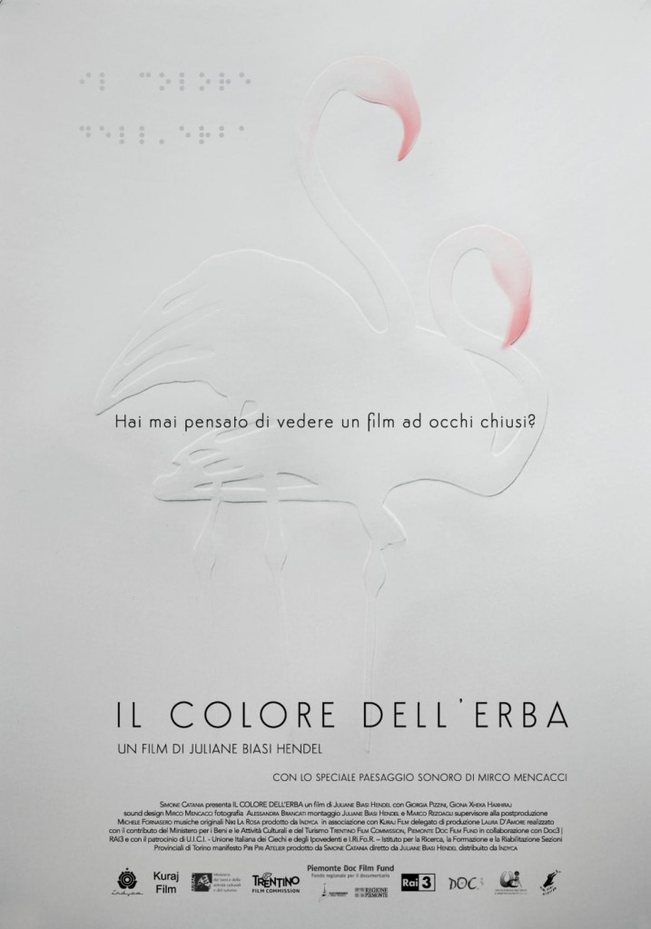 Il-colore-dell-erba-la-locandina